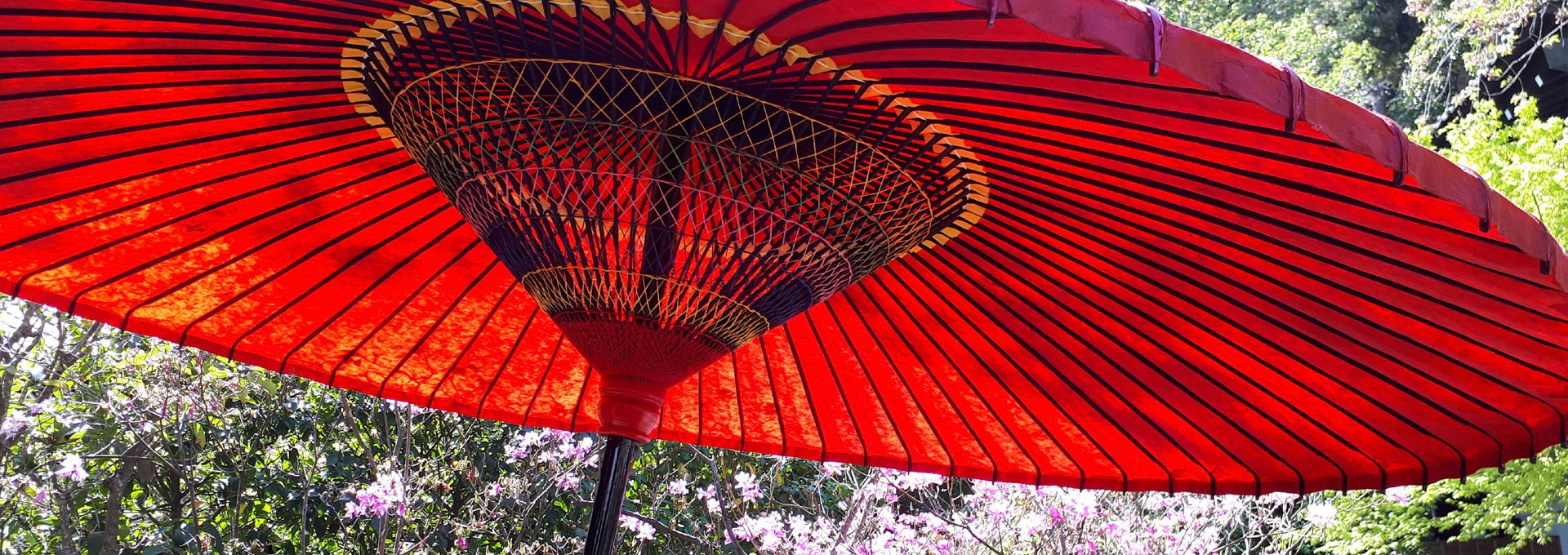 japanese umbrellas - Wasaga